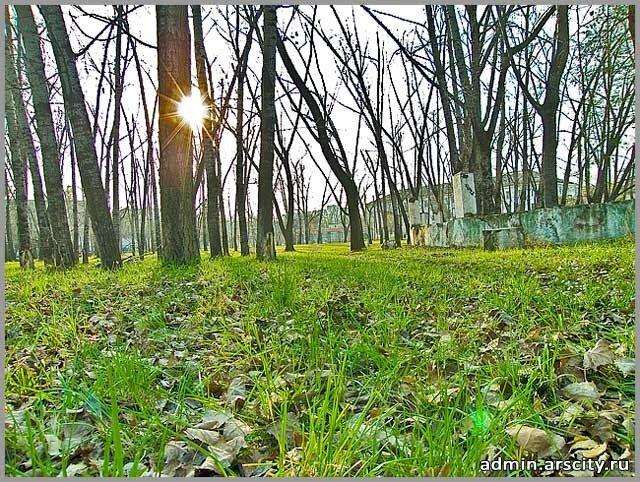 аскольдовский парк. закат