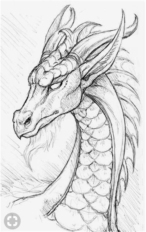 dragon art drawings bleistiftzeichnungen