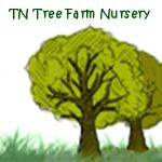 TN Tree Farm Nursery