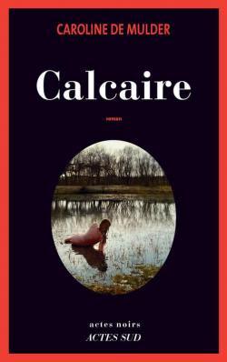 """Résultat de recherche d'images pour """"calcaire de mulder"""""""