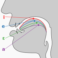 http://upload.wikimedia.org/wikipedia/commons/thumb/1/1e/Cardinal_vowel_tongue_position-front.svg/200px-Cardinal_vowel_tongue_position-front.svg.png