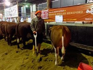 Peão Expointer (Foto: Márcio Luiz/G)