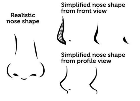 draw  simplified nose drawing draw nose