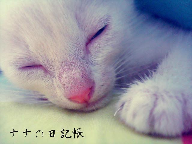 ♥みゆきちゃん♥ - Miyuki-chan