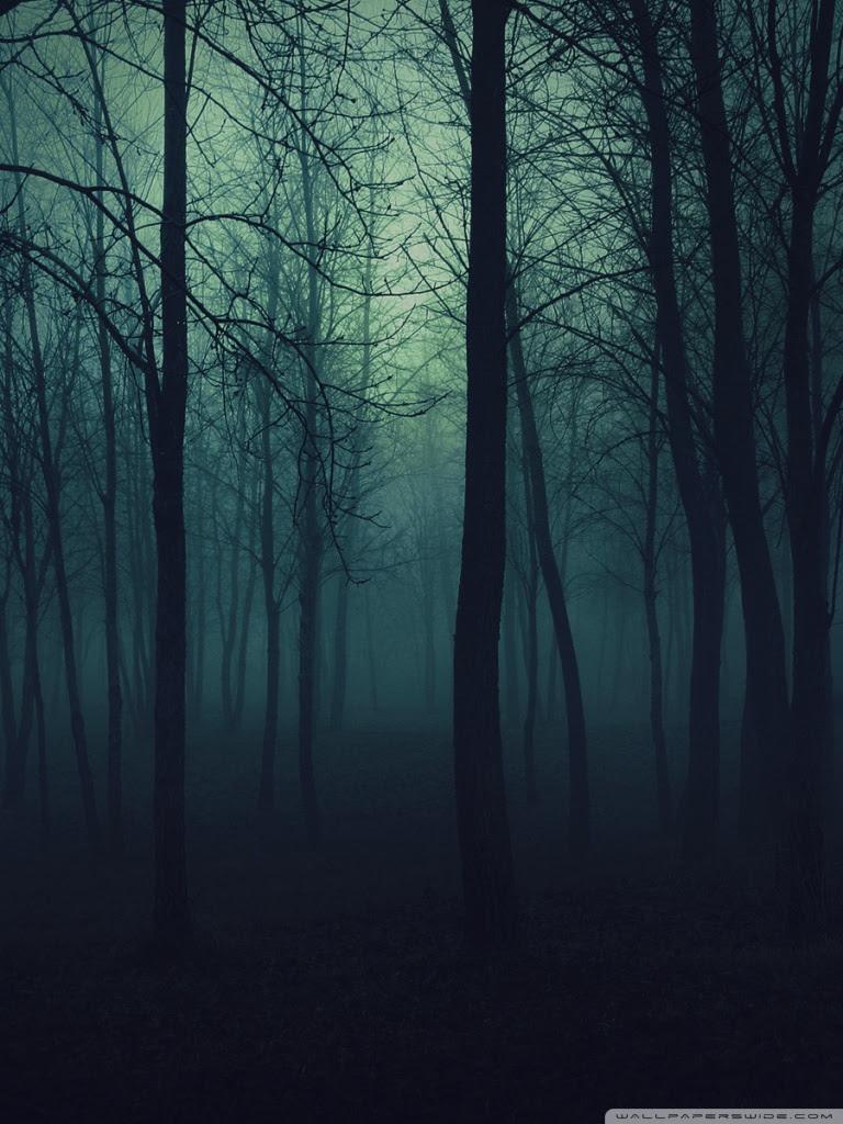 Dark Forest Wallpaper Hd For Mobile
