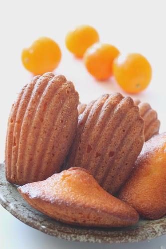 Kumquat 8