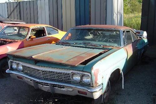 Impala001