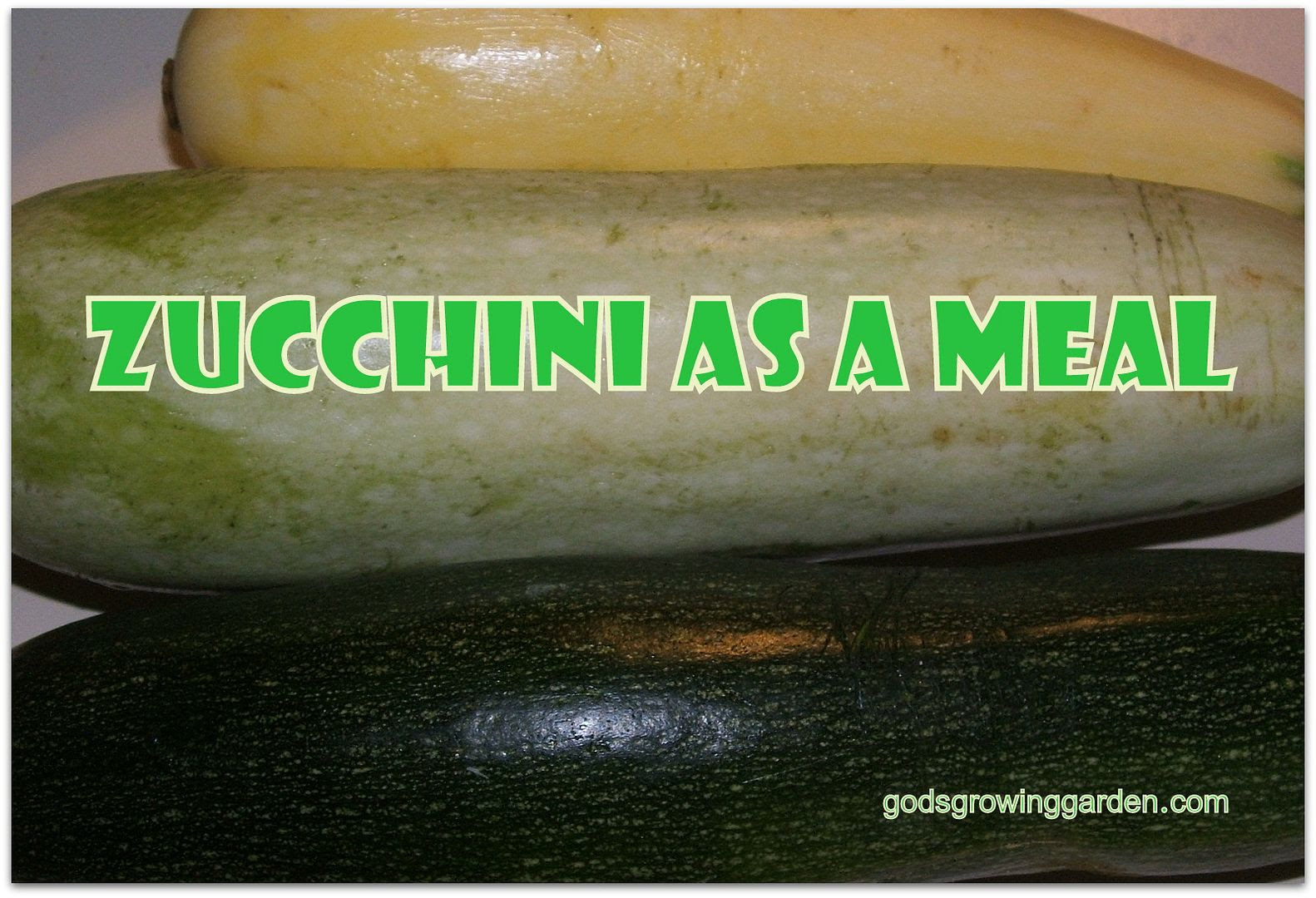 Zucchini by Angie Ouellete-Tower for godsgrowinggarden.com photo 002_zps3dbe5b4c.jpg