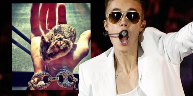 Justin Biebers ExHamster ist tot
