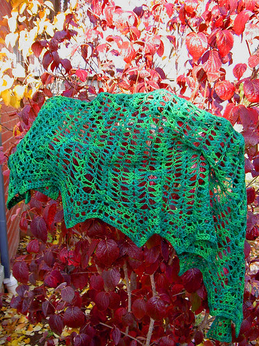 Green Heron Shawl