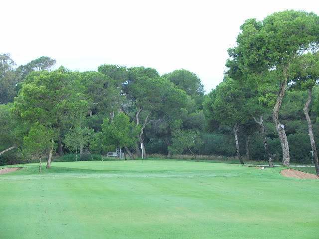 El Saler 3rd approach to green