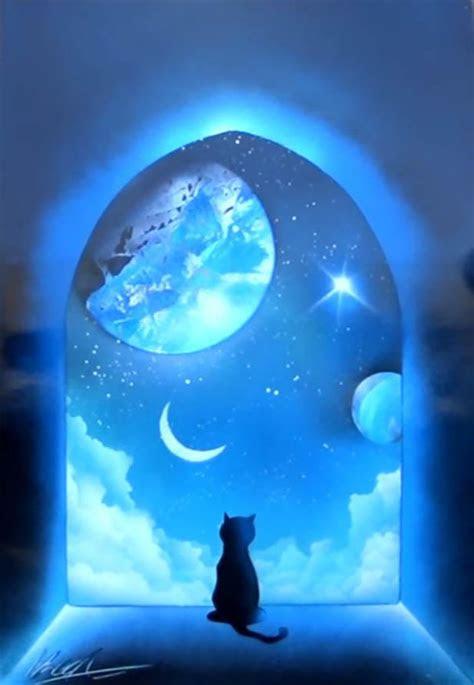 cat  window skech art