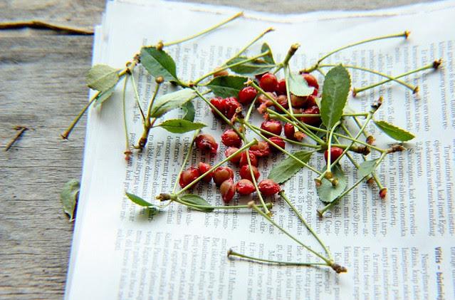 Cherries.. oh looks like no cherries..