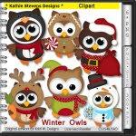 Winter Owls Clipart - CU