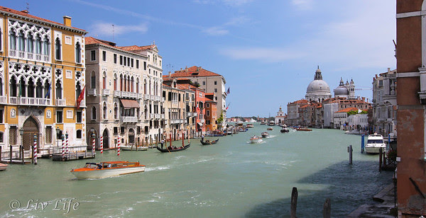 Grand Canal, Venice, Accademia Bridge