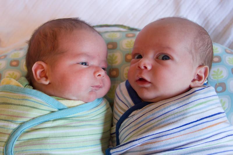 Pictures Of Newborn Baby Boy Twins Newborn Baby