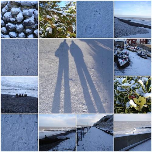 Snowy January 2010