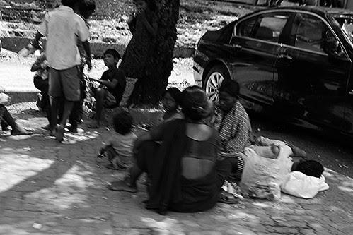 Phool Sadak Par Khilte Hain.. Inhe Log Pairon Tale  Kuchalte Hain by firoze shakir photographerno1
