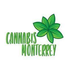 monterreycannabiscom venta de marihuana thc real cbd
