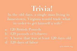 Mrs. Kitten?s A Moo How To: Cocktail Hour Trivia Cards
