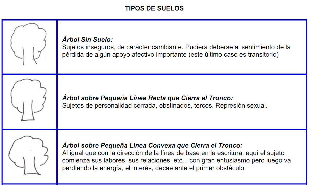 arboles_tronco34