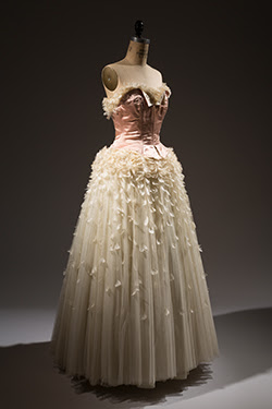 full length strapless dress with pink bodice and feathers flowing down creame colored skirt
