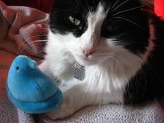 Josie with a stuffed Peep