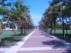 fau sidewalk