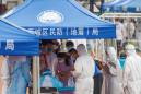 China's new virus outbreak needs further testing after 'hypothesis' on cause: WHO