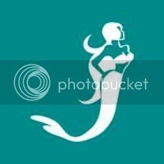 Mermaid School Training