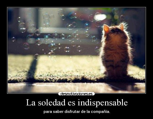 http://img.desmotivaciones.es/201301/asd_24.jpg