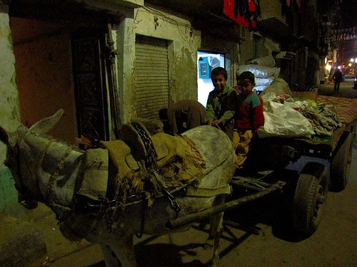 Boys and carriage - Luxor, Egypt