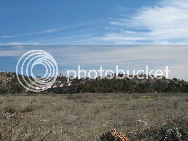 Tel Shiloh II 5