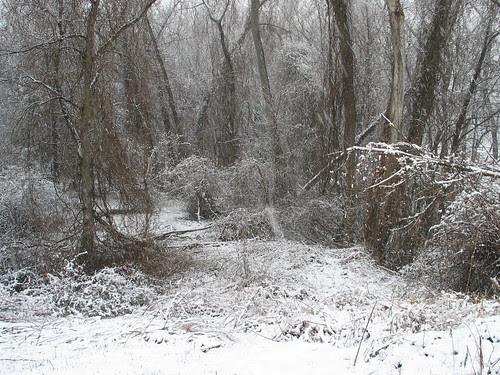 April snow 3