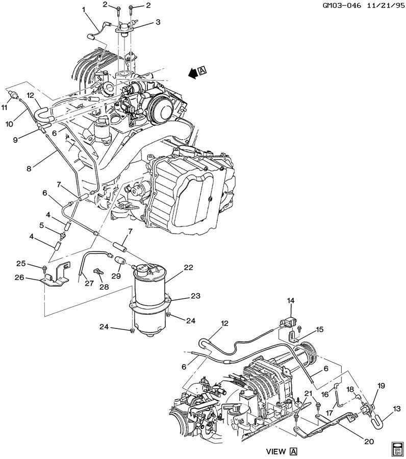VAPOR CANISTER & RELATED PARTS-V6 3.8-1
