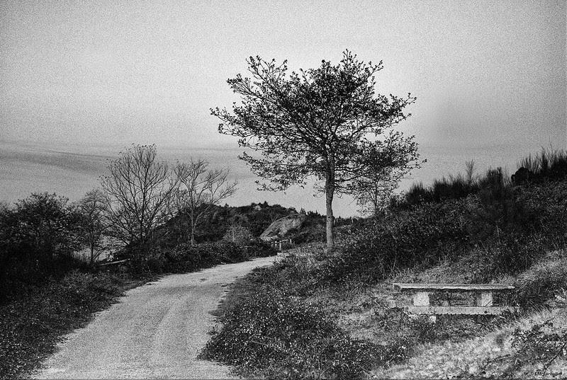 MOnte de la Fracha (Pontevedra)