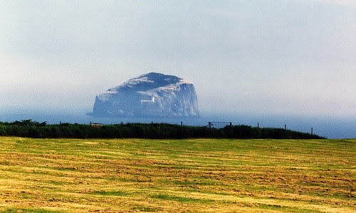 Bass  Rock, Firth of Forth, Scotland