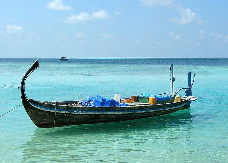ملف:Doni aux Maldives cropped.jpg