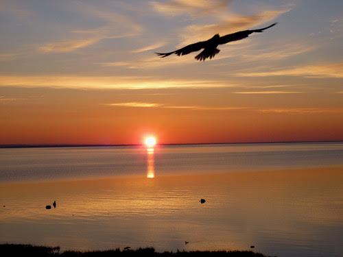 Mackinaw City/St. Ignace, Michigan 2010