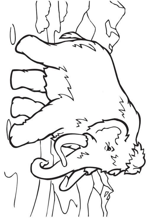 Dibujo Para Colorear Mamut Img 9959