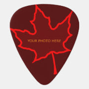 Fire Leaf Photo Template Guitar Pick