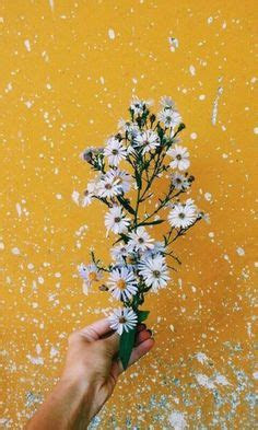 yellow aesthetic tumblr flowers yellow pinterest