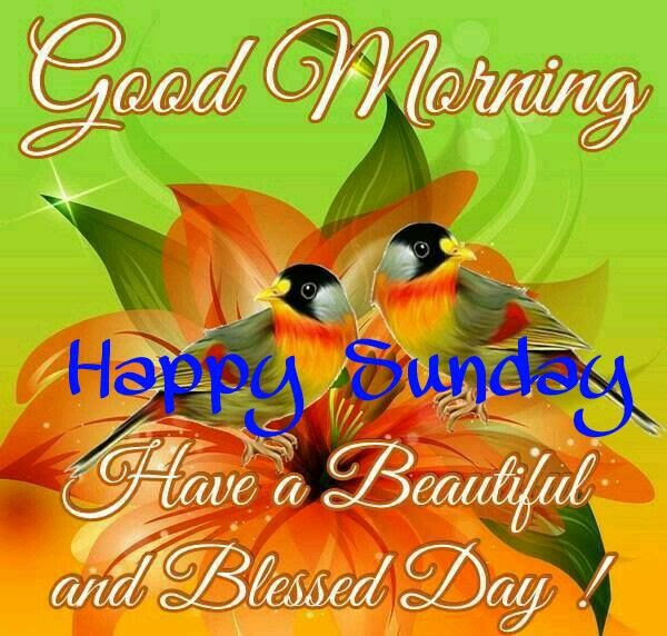 Good Morning Happy Sunday Have A Beautiful Blessed Day Pictures