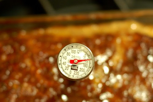 Meatloaf hits the magic number - 160 degrees by Eve Fox, Garden of Eating blog