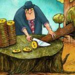 Código Florestal: o discurso vazio dos ruralistas