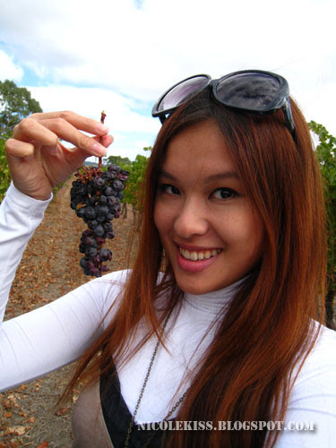 me holding a bunch of grapes