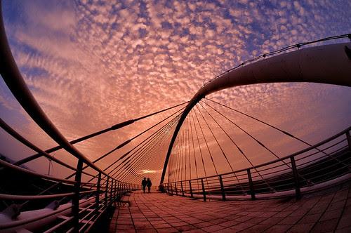 豎琴橋-2 por 號獃