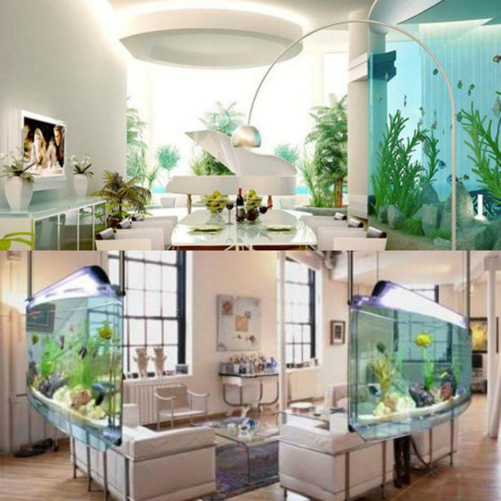 Value Added Huge Aquarium For Fish Lovers
