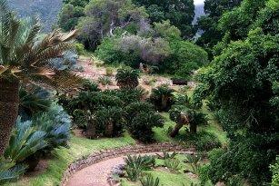 Les Jardins Du Sud Nice