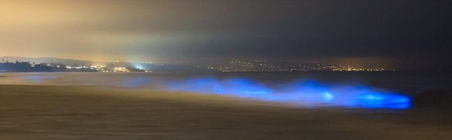 Perierga.gr - Τα «φωτεινά» κύματα της Καλιφόρνια